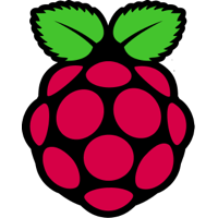 Raspberry PI icon in color - Size 200x200